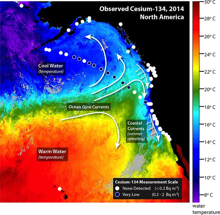 FUKUSHIMA reaches west coast 2016