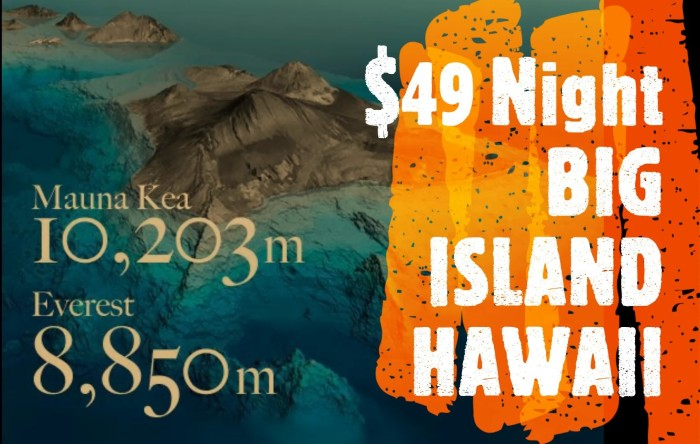 big-island-hauoli-hawanawana-logo_moment2-2