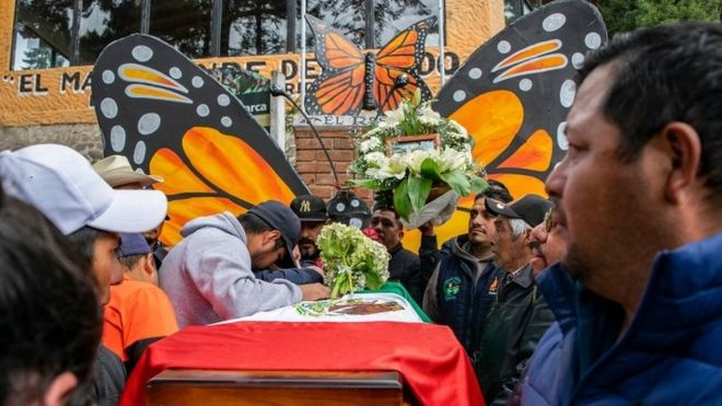 butterfly activist mexico